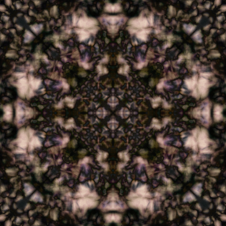 bleached: Desaturated brown and green kaleidoscope pattern Stock Photo