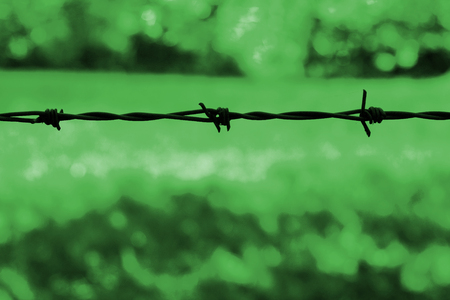 Barbed wire silhouetted against a green background
