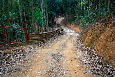 Off-road karting track, mountain and dirt road forest track Standard-Bild