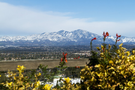 Saddleback Mountain with snow and flowers