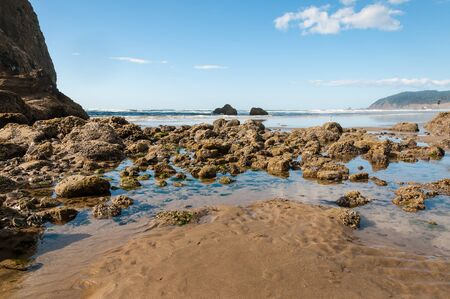 Typical rock formations found in the Pacific Northwest at Cannon Beach, Oregon