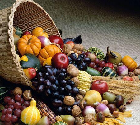 thanksgiving cornucopia: Fresh Produce from the garden