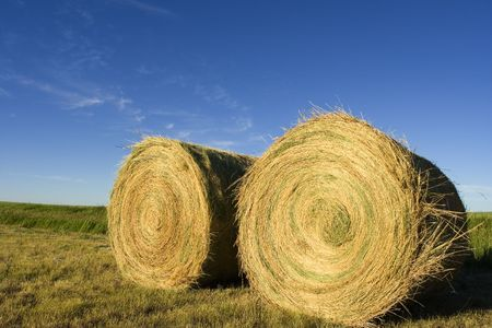 Two  bails on farmland Stock Photo - 465348