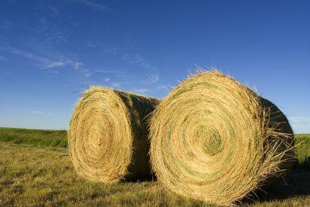 Two  bails on farmland Stock Photo - 465348