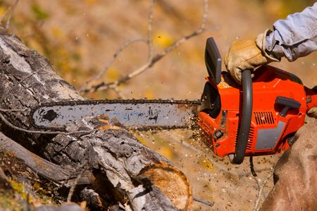 logging: A  lumberjack working with a chainsaw Stock Photo
