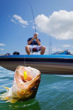 lure fishing: In una barca di pescatori che catturano uno walleye Archivio Fotografico