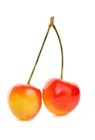 yellow: Delicious sweet rainier cherries on a white background