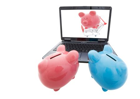 Two pigs viewing a laptop internet shopping concept Stock Photo - 6116958