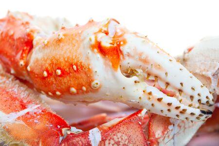 cangrejo: Cierre de patas de cangrejo rey.