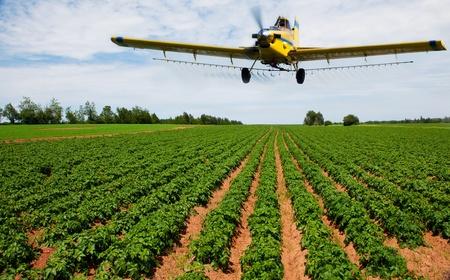 ジャガイモ畑を噴霧黄色作物ダスター 写真素材