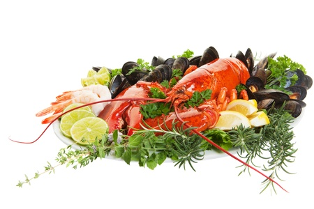 Fresh seafood dish with lobster on a white background photo