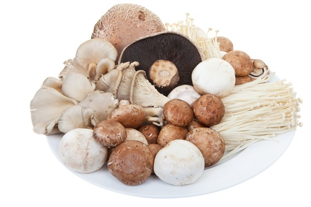 A plate of mixed mushrooms on a white background 版權商用圖片