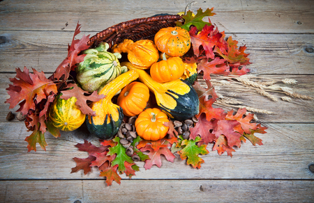 Colorful pumpkins in basket with autumn leaves on a vintage wood background.  版權商用圖片