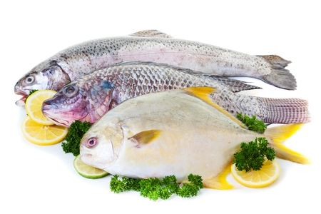 Fresh raw fish display with lemon and lime on a white background 版權商用圖片