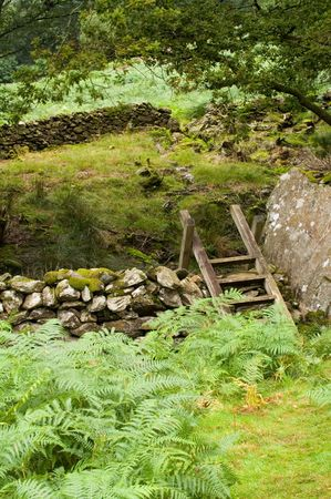 stile: Stile over drystone wall on Craflwyn estate in Wales Stock Photo