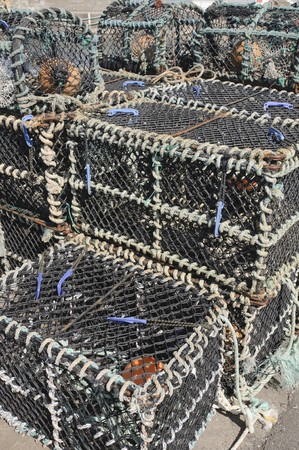 crab pots: Crab pots in John O Groats Scotland