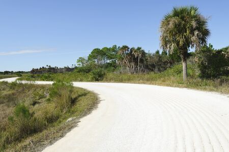 Merritt Island National Wildlife Refuge Titusville, Florida USA photo