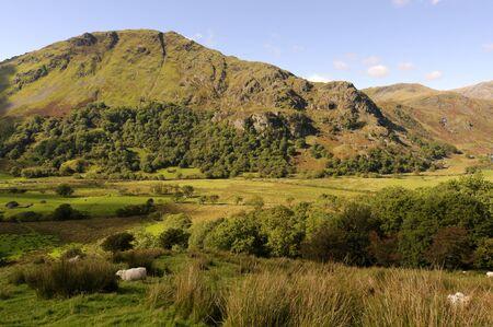 View of Gallt y Wenallt in Snowdonia National Park Gwynedd North Wales photo