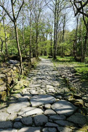 cumbria: Footpath near Grasmere village in Lake District National Park England Stock Photo