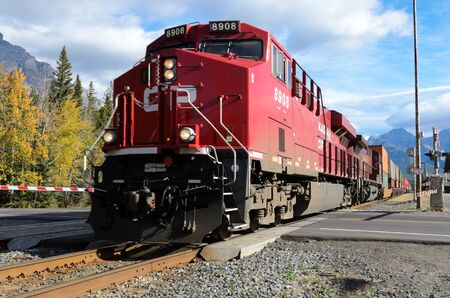 forest railway: Banff, Canada - October 1st, 2012: Canadian Pacific freight train approaching Banff level crossing