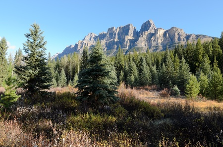 View of Eisenhower Peak and Castle Mountain from the Bow Valley in Banff National Park Alberta Canada photo