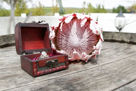 protea flower: Wedding rings in a box next to a Protea Flower