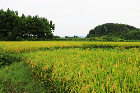 Rural scenery in Jiangyong County, Yongzhou, Hunan, China