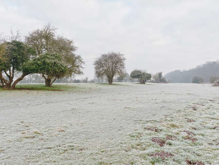 Frost and mist clings to the grass and trees in a meadow at the side of the River Trent