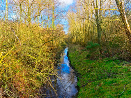 At the bottom of a steep sided ditch a narrow stream reflects the blue winter sky. The banks of the ditch are almost overgrown. Banque d'images