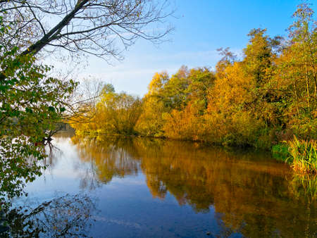 Early morning sunshine reflecting autumnal colours of trees and shrubs in the still water of a lake