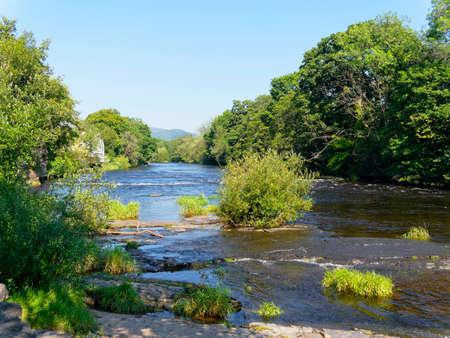 A small bush grows on a slab of rock in the fast flowing River Dee in Llangollen, Wales