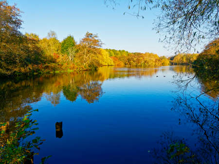 The still waters of a small lake reflect the surrounding autumnal foliage in the early morning sun