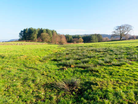 In the Derbyshire countryside, following the Limestone Way, on a bright winter morning.