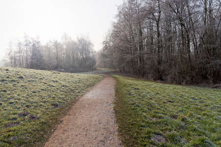 On a cold, misty and frosty morning a footpath winds between grass verges bordered by bare frost laden trees 免版税图像