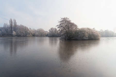 Over a small frozen lake on a cold, misty morning, to a small island of frost covered trees and bushes 免版税图像