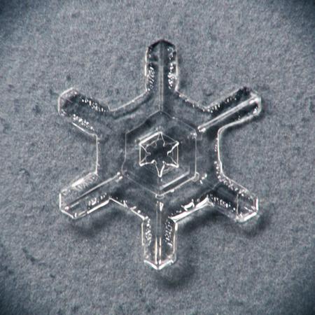 Single melting snowflake macro with grayblue background Stock Photo