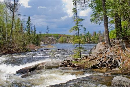 minnesota woods: rapids tumbling into gull lake, in the bwcaw, minnesota.