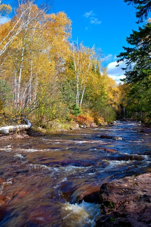 minnesota woods: looking up the fast flowing water of caribou creek, autumn, in northern minnesota. Stock Photo