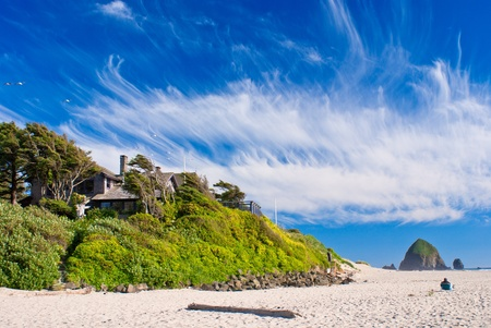 A man relaxing on a beach chair, windswept clouds and trees, seagulls and monoliths, cannon beach, oregon. photo