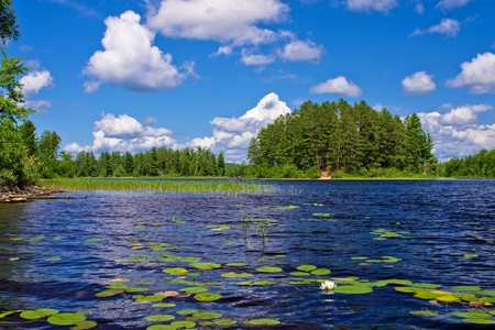 newton lake, in the (bwcaw) boundary waters canoe area wilderness, minnesota.  Stock Photo