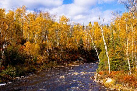 temperance: autumn, along the banks of the temperance river, minnesota.