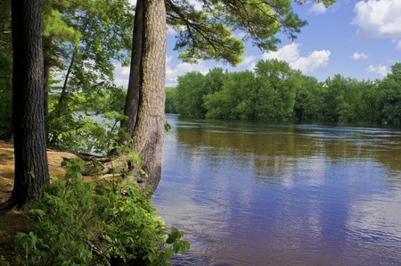 state of wisconsin: a view across to wisconsin, from the pine studded shoreline of the st. croix river, at william obrian state park, minnesota. Stock Photo