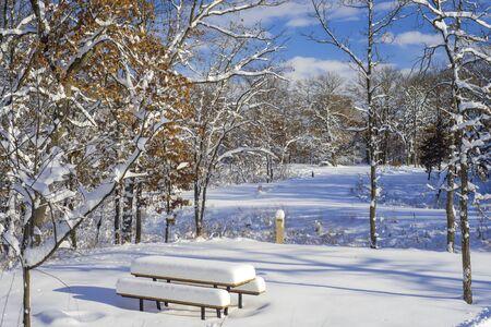 await: snow flocked picnic tables, await a new season of use, in bunker hills regional park, minnesota.