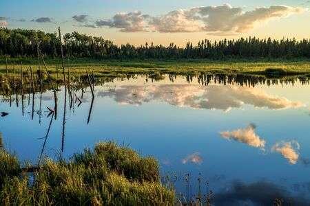 boreal: a tranquil pond refects a boreal forest and drifting clouds at sunset, northern minnesota  Stock Photo