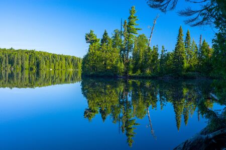 a mirrorred forest is reflected on the placid waters of sawbill lake, in the boundary waters conoe area wilderness, minnesota. Stock Photo