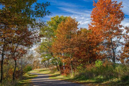 an autumn trail winds through bunker hills regional park, andover, minnesota.
