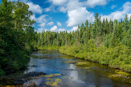 the temperance river slices through the superior national forest, in northeast ninnesota.