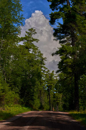 a towering cumulonimbus cloud rises above the sawbill trail, in the superior national forest, minnesota.