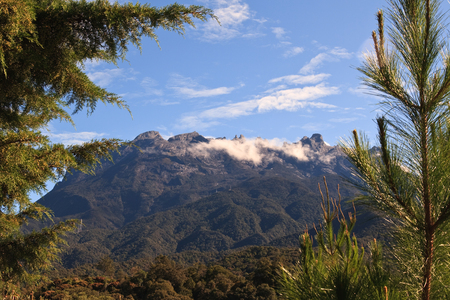 kinabalu: Cloudy Mt Kinabalu Peaks from forest below