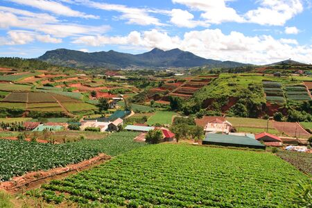 Vietnam Landscape of farm fields in Dalat highlands, Asia Stock Photo